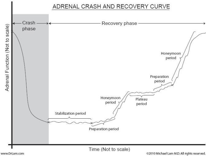 adrenal_fatigue_crash_acrc_adrenal_crash_and_recovery_curve