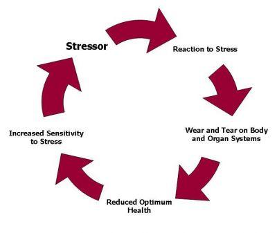 chronic-stress-diagram