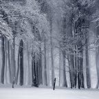 Silent Womb – Sneeuw Stop