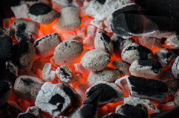 barbecue-bbq-briquettes-9263